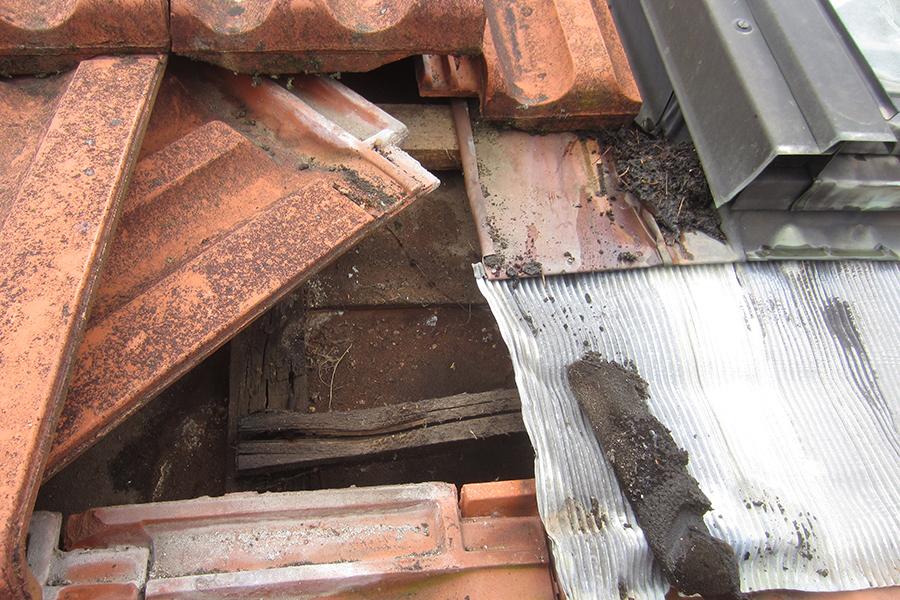 Reparaturen Dachservice kilian friederich